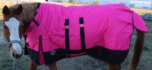 challenger-1200d-turnout-waterproof-horse-heavy-winter-blanket-best-horse-turnout-winter-blankets
