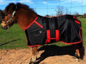 challenger-420d-miniature-weanling-horse-rain-sheet-best-horse-rain-sheets