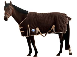 derby-originals-heavy-duty-1200d-400g-winter-turnout-horse-blanket-best-horse-fly-sheets-best-horse-fly-sheets