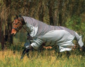 horseware-amigo-3-in-1-fly-sheet-best-horse-fly-sheets