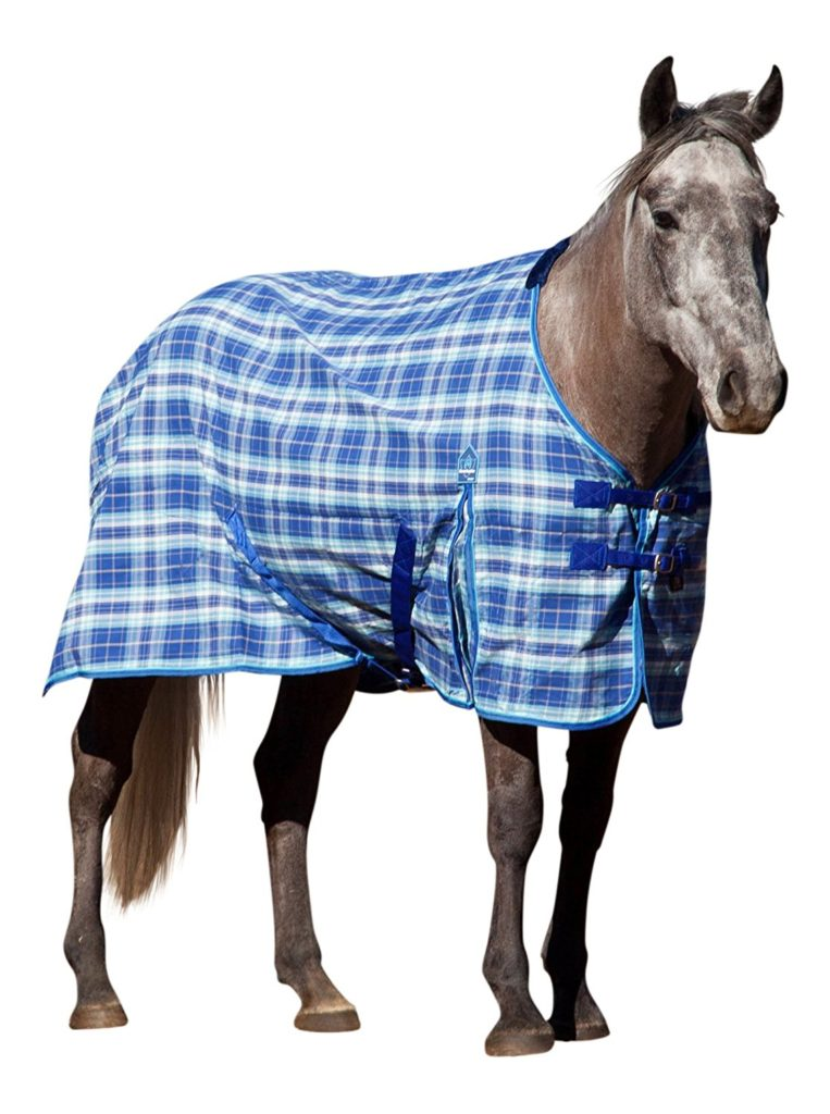 kensington-kpp-poly-day-sheet-best-horse-rain-sheets