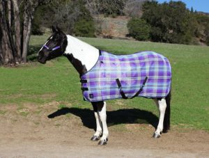kensington-platinum-surefit-protective-fly-sheet-for-horses-best-horse-fly-sheets