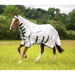 shires-sweet-itch-combo-fly-sheet-best-horse-fly-sheets