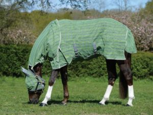 wb-dura-mesh-detach-a-neck-fly-sheet-best-horse-fly-sheets