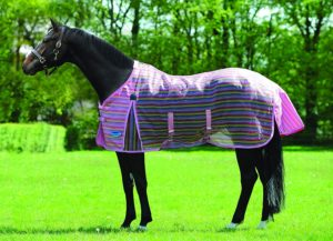 weatherbeeta-ripshield-standard-pony-fly-sheet-best-horse-fly-sheets