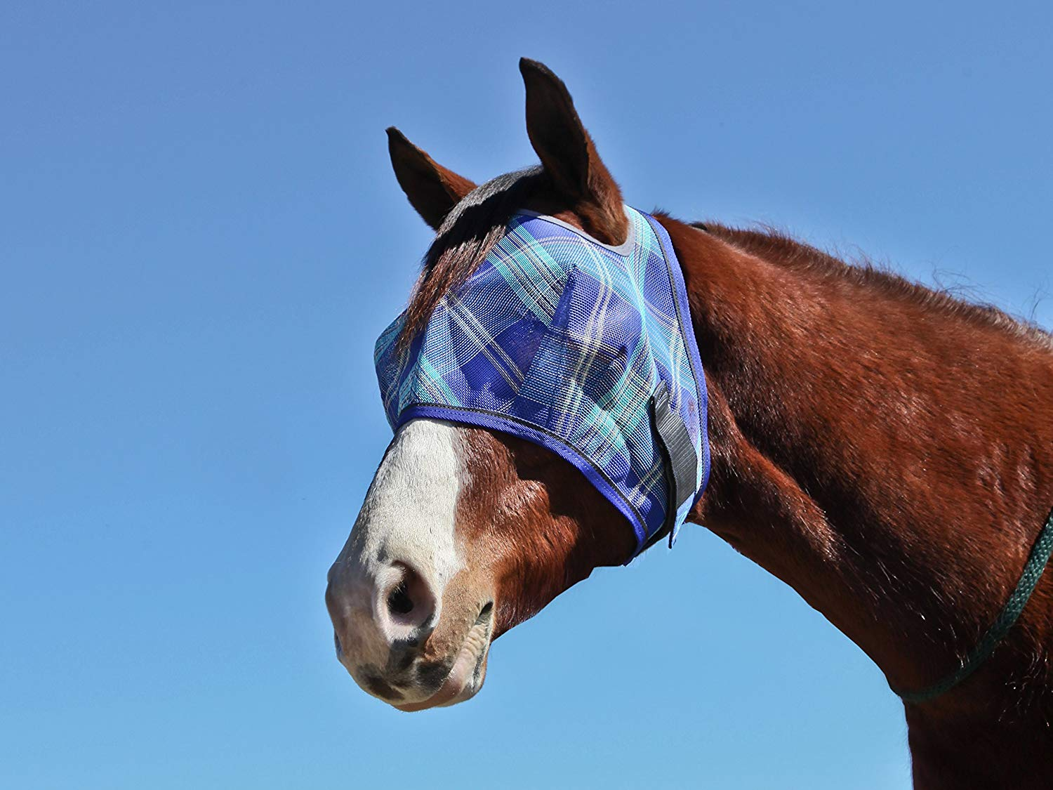 kensington-kpp-fly-mask-best-horse-fly-masks
