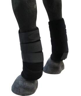 TGW Best Horse Boots