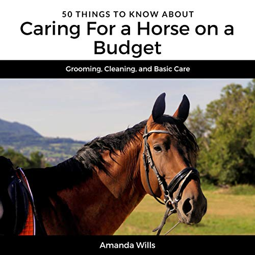 50 Things to Know About Caring for a Horse on a Budget