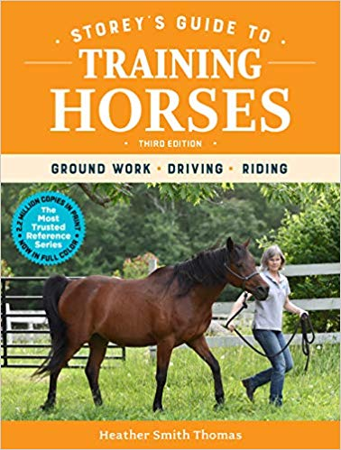 Best Horse Training Books for Beginners