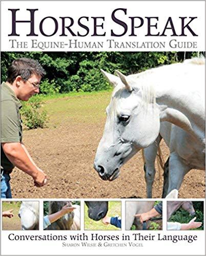Best Horse Behavior Books