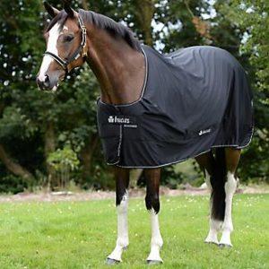 Bucus power horse cooler