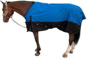TGW horse rain sheet