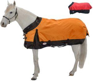 Derby horse rain sheet